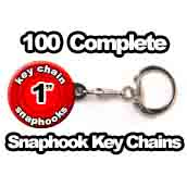 100 x Snaphook Key Chains 1 inch